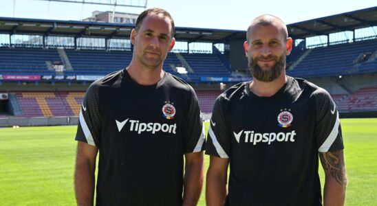 Michal Špit & David Bičík